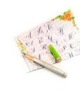 Bút mài thầy Ánh SH 040 Plus